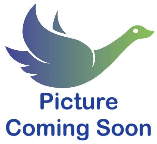 Steel Tri - Wheel Walker With loop Brakes - Chrome
