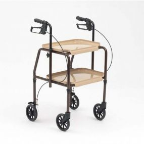 Combination Trolley Walker